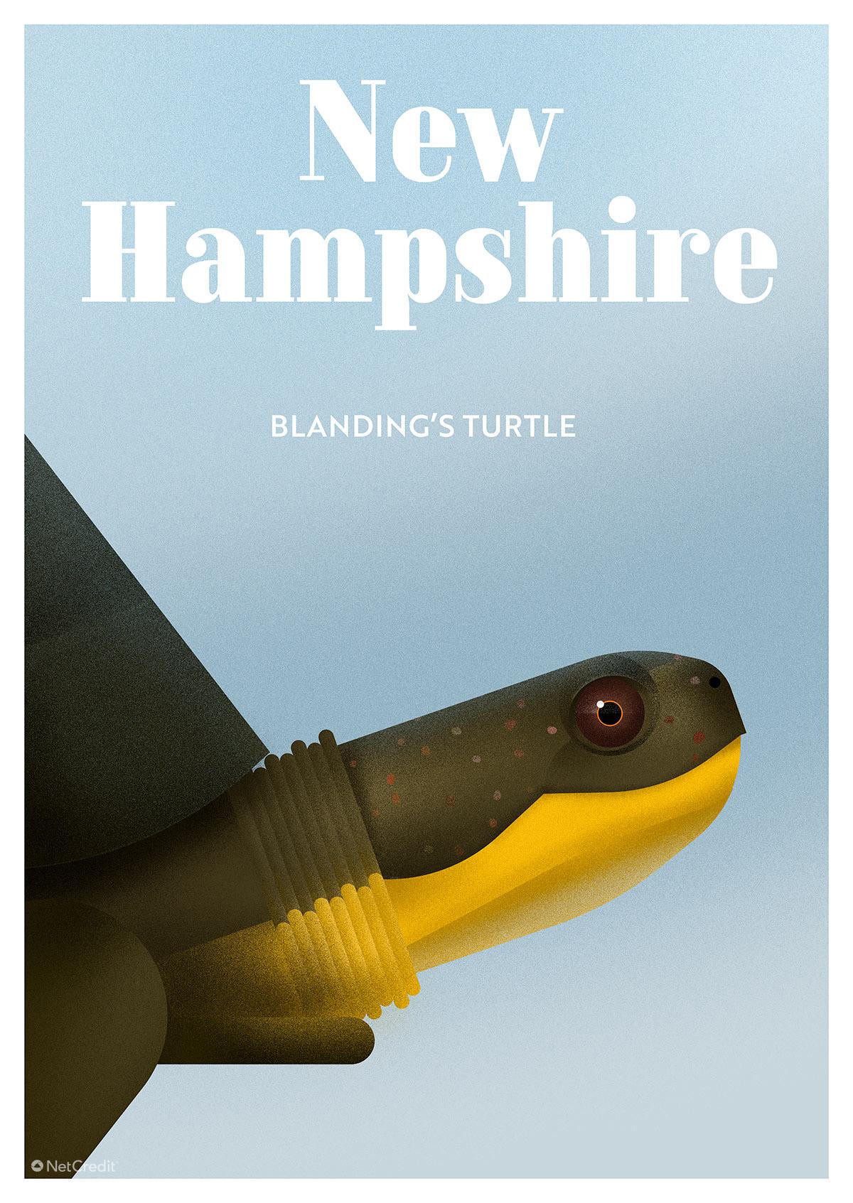 New-Hampshire