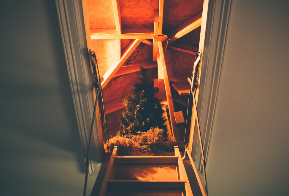 Upward view looking into an attic space