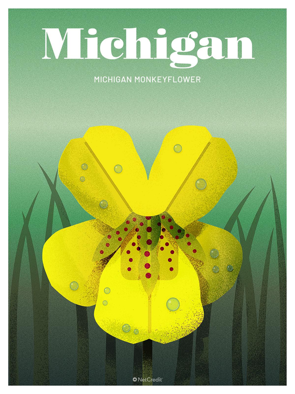 Endangered Plant in Michigan: Monkeyflower
