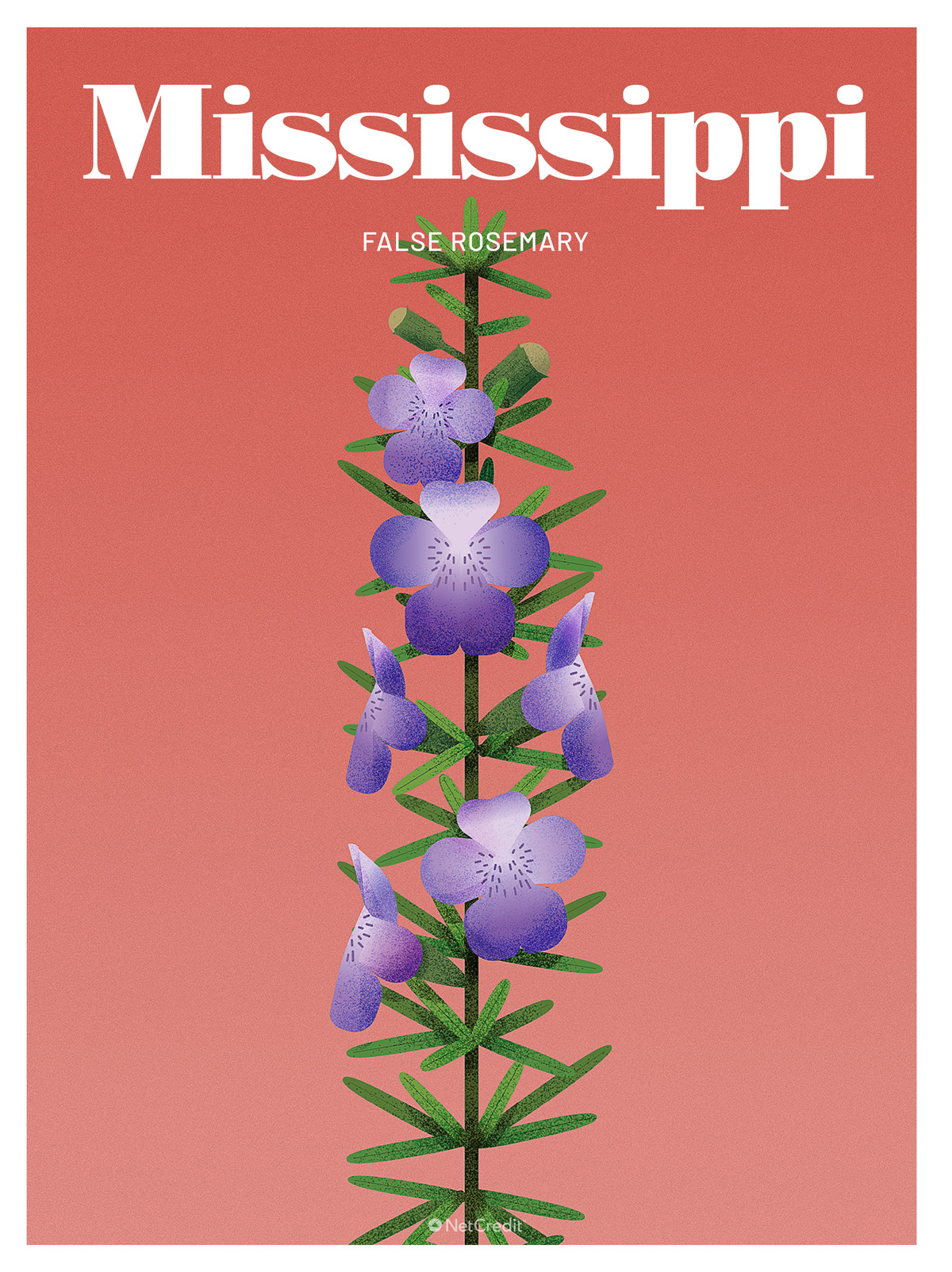 Endangered Plant in Mississippi: False Rosemary