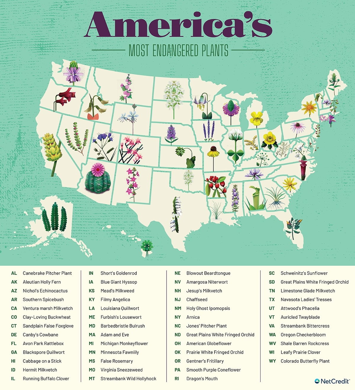 America's Most Endangered Plants