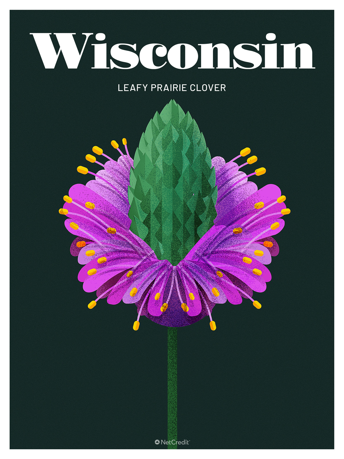Endangered Plant in Wisconsin: Leafy Prairie Clover