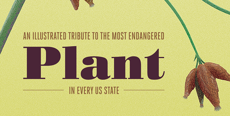 An Illustrated Tribute to the Most Endangered Plant in Every U.S. State